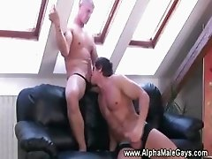 Muscled studs play with stiff boners