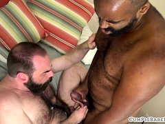 Ebony bear barebacks hairy hunk on the bed