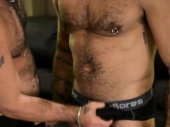 Hairy bears deepthroat cock