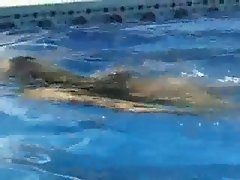Girl Sex in the Pool